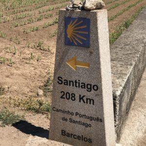 カミーノ「ポルトガル人の道」のモホン道標