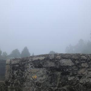カミーノ「ポルトガル人の道」Balugaesで朝靄の田園風景さんぽ