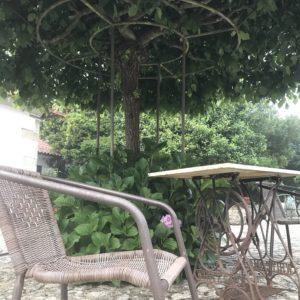 カミーノ「ポルトガル人の道」Balugaes Casas da Quinta da Cancelaの庭