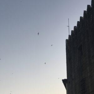 カミーノ「ポルトガル人の道」ポンテ・デ・リマの夜明け