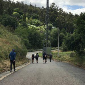 カミーノ「ポルトガル人の道」パドロンからサンティアゴへ