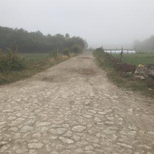 カミーノ「ポルトガル人の道」Balugaes 早朝散歩