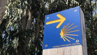カミーノ「ポルトガル人の道」の黄色い矢印